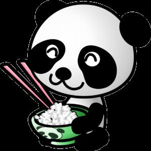 Panda Kochspiele umsonst auf Panfu.de spielen!